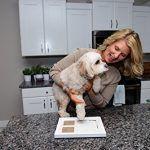 Marco de huellas de bebé - También para guardar un reguerdo de tu mascota
