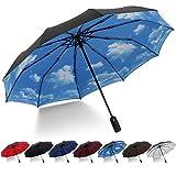 Paraguas Compacto y Resistente al Viento, HeHe Paraguas Plegable con Apertura y Cierre Automático, Tejido de Doble Capa 210T y con 10 Varillas Reforzadas. Paraguas de Viaje portátil