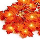 Hojas de otoño, Ainkedin guirnalda otoño, 20 luces led decoracion, Luces decoracion halloween, Adornos navidad, Guirnaldas decoracion pared plantas artificiales decoracion Escalera decorativa