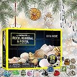 Calendario de Adviento 2021 niños, 24 minerales Surtidos Juguetes educativos de conteo navideño Regalos para niñas y niños 4 5 6 7 8 años