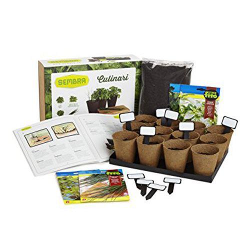 Kit de cultivo - Hierbas culinarias: Perejil, albahaca, orégano y salvia