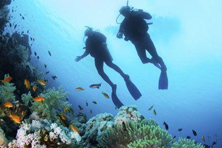 Regala una experiencia: Buceo o snorkel